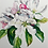 Thumbnail: Apple Blossoms 2