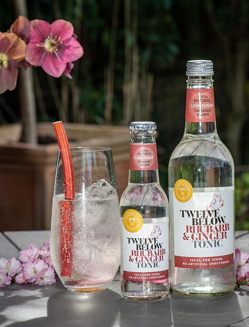 Twelve Below Rhubarb and Ginger tonic