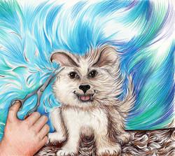 The Ugly Dog Book haircut-mess_