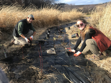 Upcoming Event | Plant the Palouse Volunteer Day