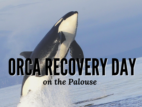 Upcoming Event 8.16.21 | Orca Recovery Day on the Palouse