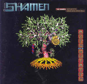 The Shamen Agua Azul: The ToaST