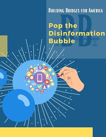 Pop the Disinformation Bubble cover.JPG