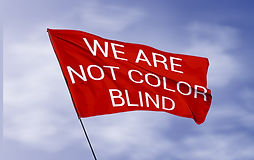 WE ARE NOT COLOR BLIND flag (Lénie Blue)