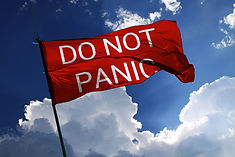 DO NOT PANIC flag (Lénie Blue)