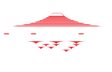 BlockColour-Logo.png
