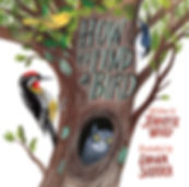 How to Find a Bird by Jennifer Ward and Diana Sudyka