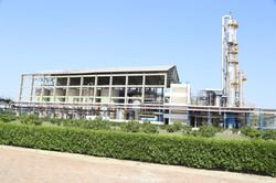 Site View of Fermentation & Distilation
