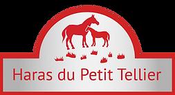 Logo Petit Tellier silver copie.png