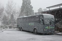 Rewa in the snow, Queenstown