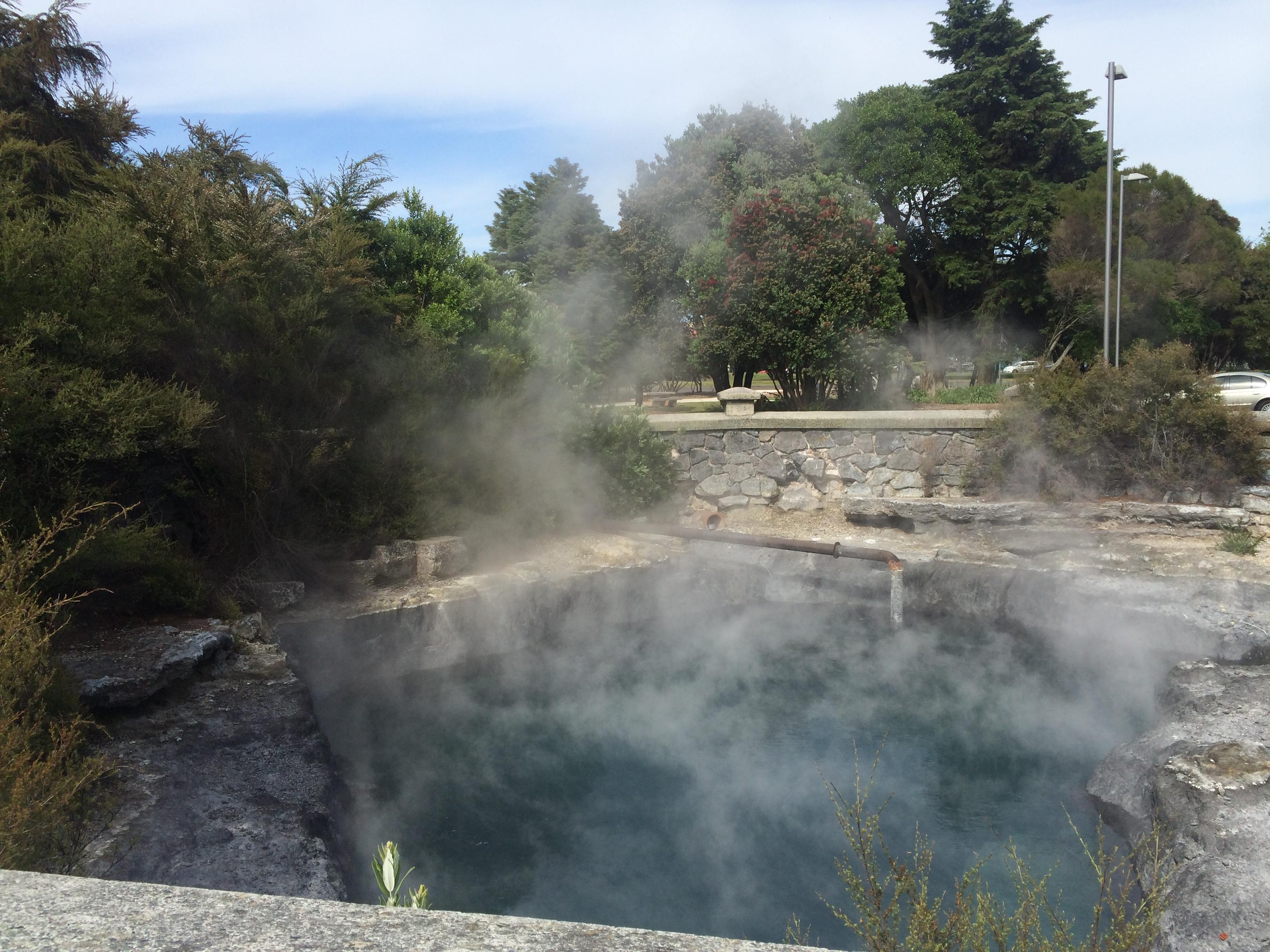 Whangapipiro - Rachel Pool, Rotorua