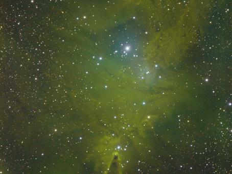 Cone Nebula - Narrowband Image