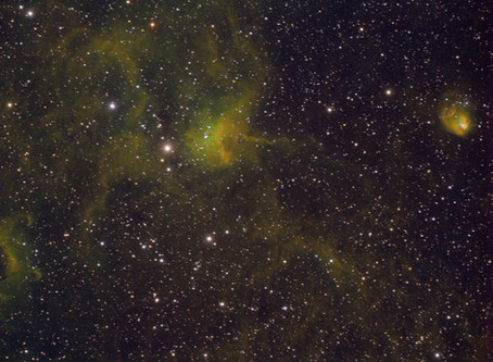 IC417 Spider and the Fly Nebula in Narrowband