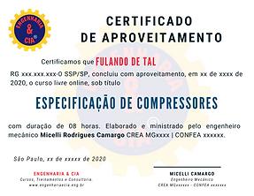TREINAMENTO ESPECIFICAÇÃO DE COMPRESSORES