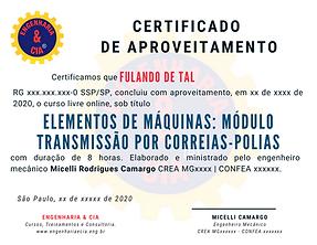 CURSO ELEMENTOS DE MÁQUINAS: MÓDULO TRANSMISSÃO POR POLIAS-CORREIAS