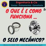 Vedação Industrial - Selos Mecânicos