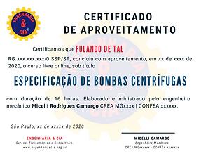 CURSO ESPECIFICAÇÃO DE BOMBAS CENTRÍFUGAS