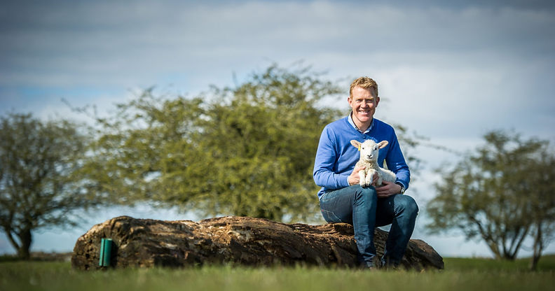 adam henson sheep.jpg