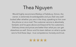 Thea Nguyen review