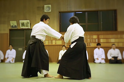 Aikido in Tanabe, Japan - First Time Practice
