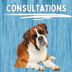 Consultations (3).png