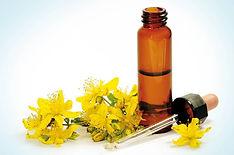 bach-flower-remedies-flowers-that-heal.j