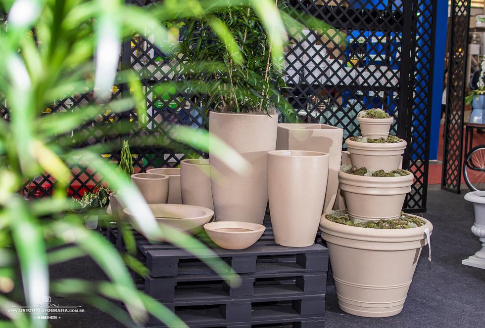 fotos-enflor-expoflora-holambra-2585.jpg