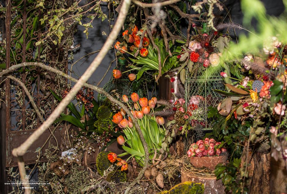 fotos-enflor-expoflora-holambra-2680.jpg