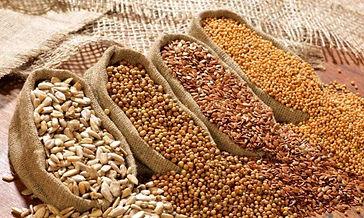 імпорт насіння