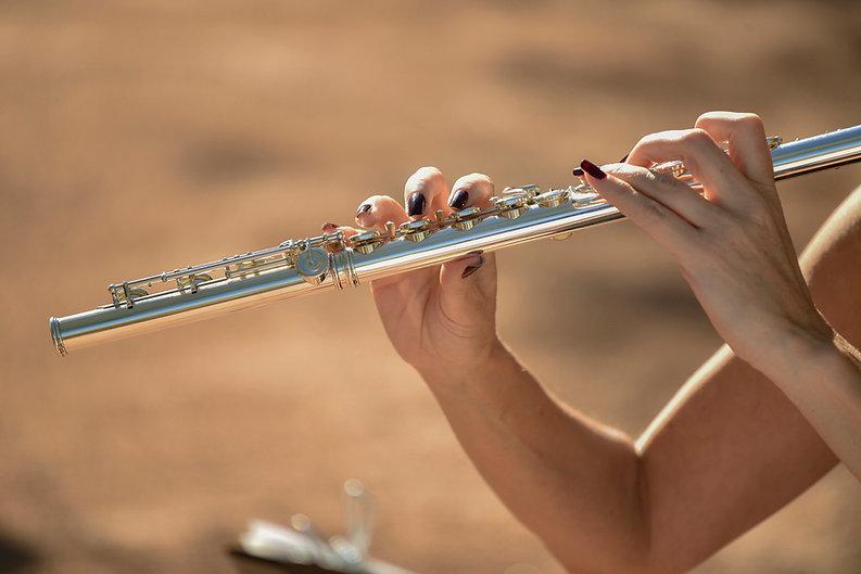 Lauras flute DBG wedding.jpg