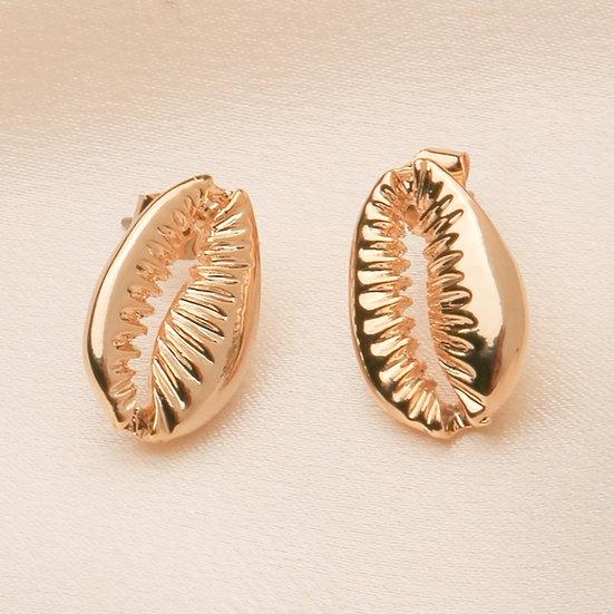 Brass Cowrie Shell Stud Earrings