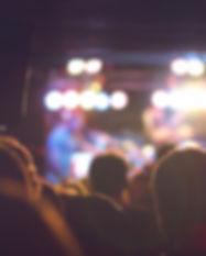 Pubblico in un concerto