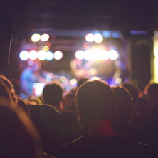Audience at a Concert