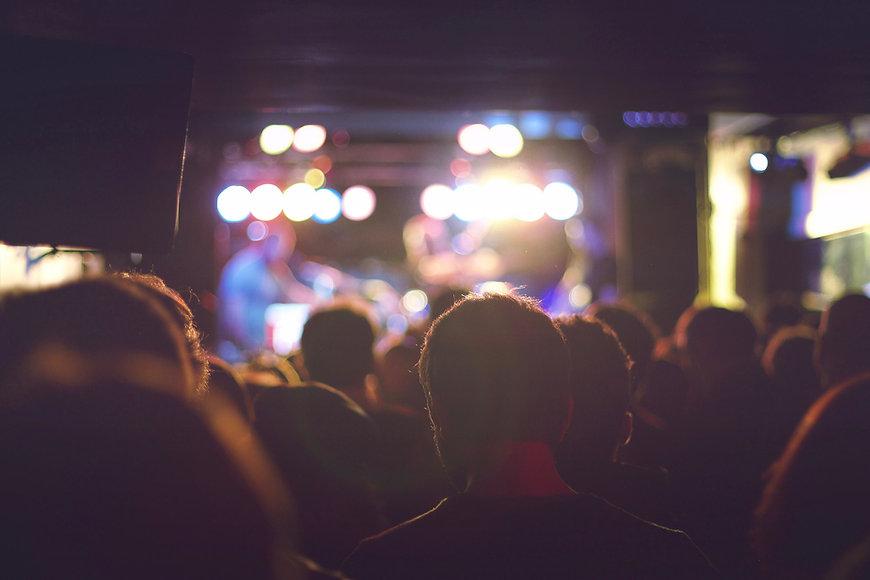 Audience à un concert