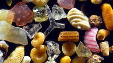 magnified sand