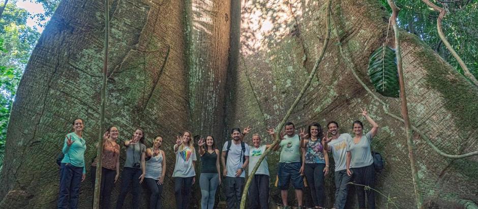 6 fatos que você não sabia sobre a Amazônia