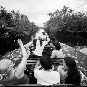Qual a melhor época para viajar para a Amazônia?