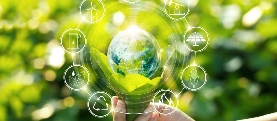 O que é sustentabilidade: conceito e exemplos