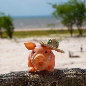 Quanto custa viajar para a Amazônia?