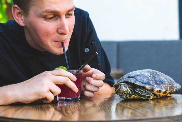 A man sharing a cocktail with a turtle