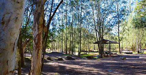Jervis Bay Camping