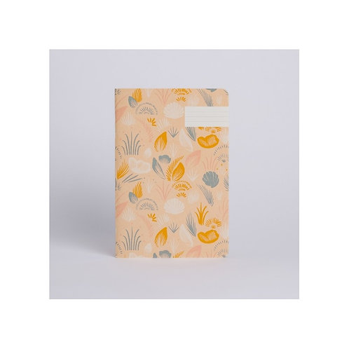 Cahier Coquillages