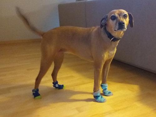 Stoppersocken für den Hund