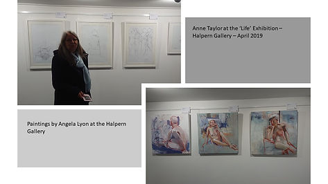 Life - Halpern Gallery.jpg