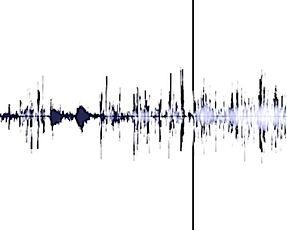 Crow sound spectrum interrupted.jpg