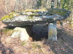 Brengues,dolmen de Fourques basses