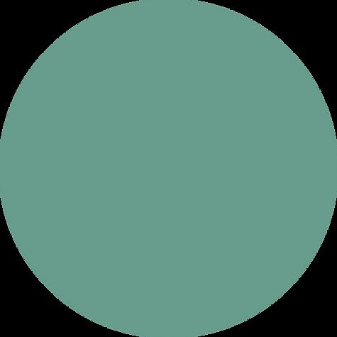 hero-circle-mint.png