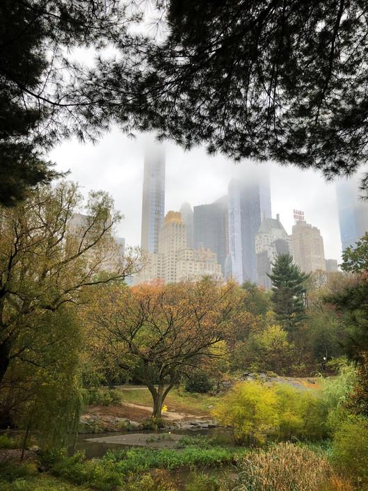 Serie Central Park New York Foto 1 .jpg