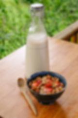 noix germées lait d'amandes maison