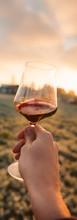 vineyard_toast.jpg